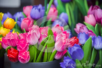 Colourful wooden tulips in amsterdam flower market