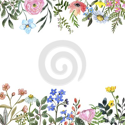 Watercolor wildflower frame on white background. Beautiful summer meadow flowers border
