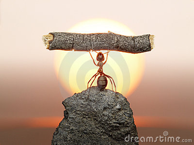 Statue of Labour, ants civilization