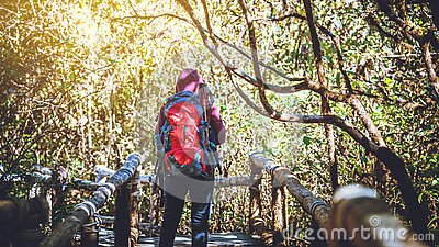 Photographer  asian women travel  nature. Travel relax.  Nature Study in the Jungle. Thailand