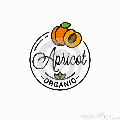 Apricot fruit logo. Round linear of apricot slice