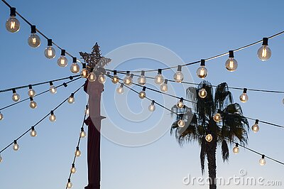 Christmas star and garlands on the background of the evening sky and palm tree. Street Christmas decorations.