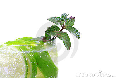 Fresh lime and mint drink