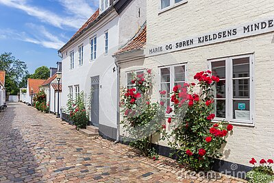 Red flowers on a historic house in Ribe