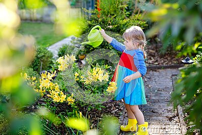 Beautiful little toddler girl in yellow rubber boots and colorful dress watering spring flowers with kids water can