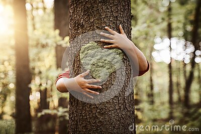 Nature lover, close up of child hands hugging a tree