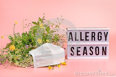 The concept combating and preventing seasonal allergies. Fresh flowers medical mask pink background text Allergy Season
