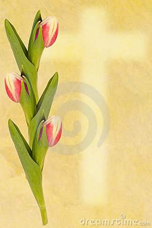 Easter greetingcard tulip and cross