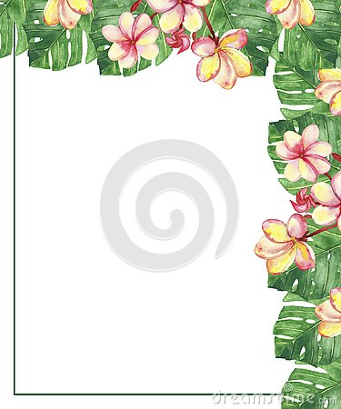 Watercolor hand painted nature floral tropical corner border frame with green palm leaves and blossom pink plumeria flowers