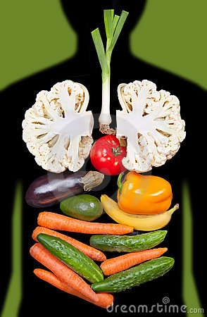 Human internal organs lined with vegetables