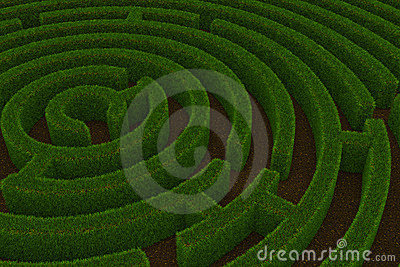 Maze with grass walls.
