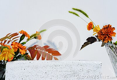 Autumn flower podium or display for product presentation