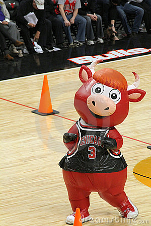 Chicago Bulls Inflatable