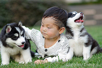Girl play with puppy