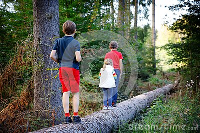 Portrait of three siblings children. Little cute toddler sister girl and Two kids brothers boys having fun together in