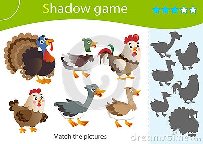 Shadow Game for kids. Match the right shadow. Color images of farm animals. Poultry. Turkey, goose, duck, Drake, hen, rooster.
