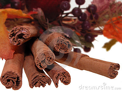 Cinnamon Bundle Still Life