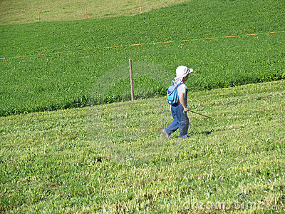 Toddler walking on the meadow