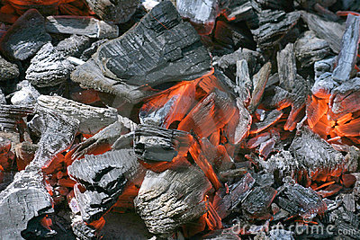 Embers Forge Fire