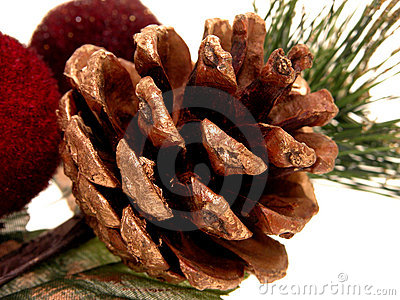 Holiday:  Gold Painted Pine Cone