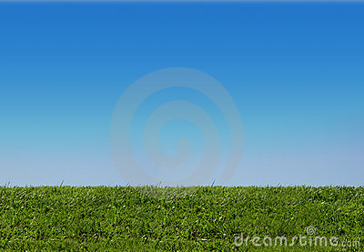 Background of sky and grass