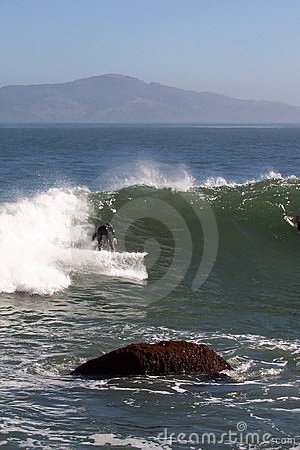 San Francisco Surfer