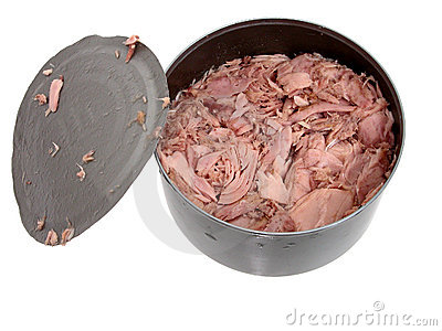 Food: Tuna in a Can