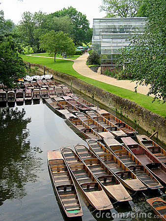 Punts on the river