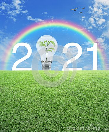 2021 white text and light bulb with small plant inside on green grass field over rainbow, birds and blue sky with white clouds, Ha