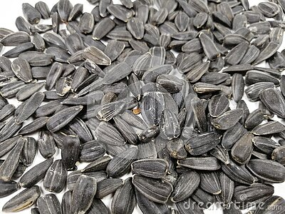 sunflower seeds on white table