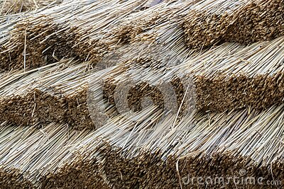 Straw thatching roof. Texture background.