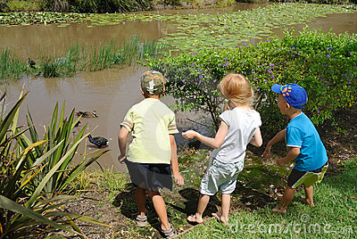 Young kids feeding ducks in pond