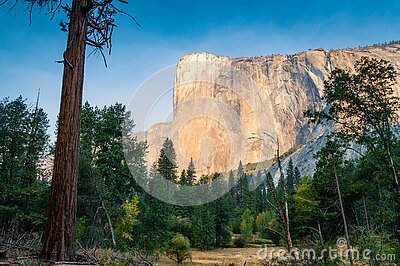 Massive El Capitan cliff as seen from Yosemite valley floor
