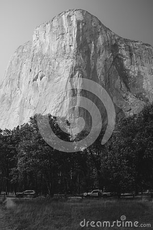 El Capitan seen from Yosemite valley floor. Vertical black and white photo