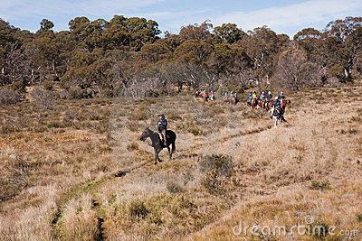 Ecotourism horse riders on trail