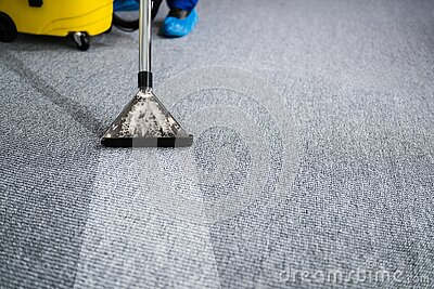Professional Carpet Cleaning Service. Vacuum Cleaner