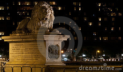 The lion of the Chain bridge in Budapest