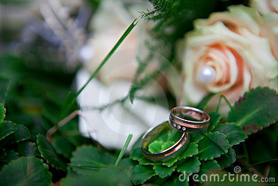 Wedding rings on green leaf