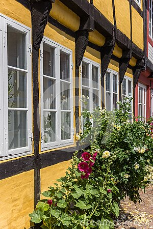 Flowers in front of a half timbered house in Ribe