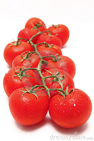 Vine tomato tomatoes red