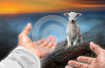 Hands of God reaching out to a lost sheep