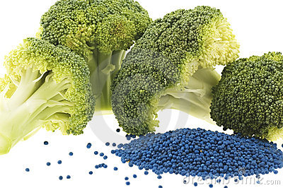 Closeup of broccoli florets and seed