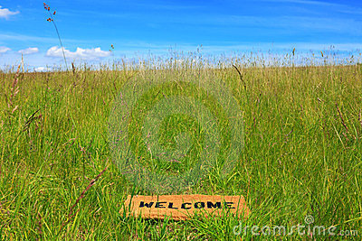 Welcome mat in a grass meadow with blue sky