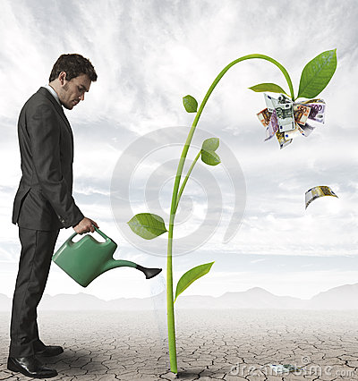 stock image of businessman and a plant of money