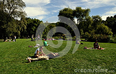 NYC: Sunbathing in Central Park