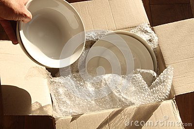Cardboard Packing Box, Plates and Bubble Wrap