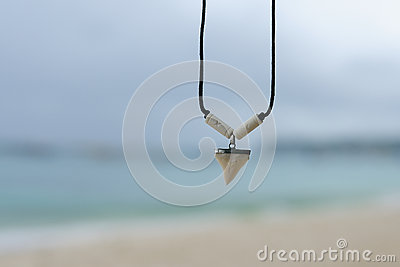 Necklace with a shark's tooth