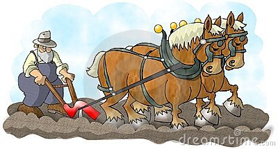 Horses and Plow