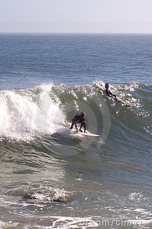 San Francisco Surfers