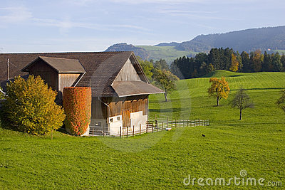 Swiss Farm I
